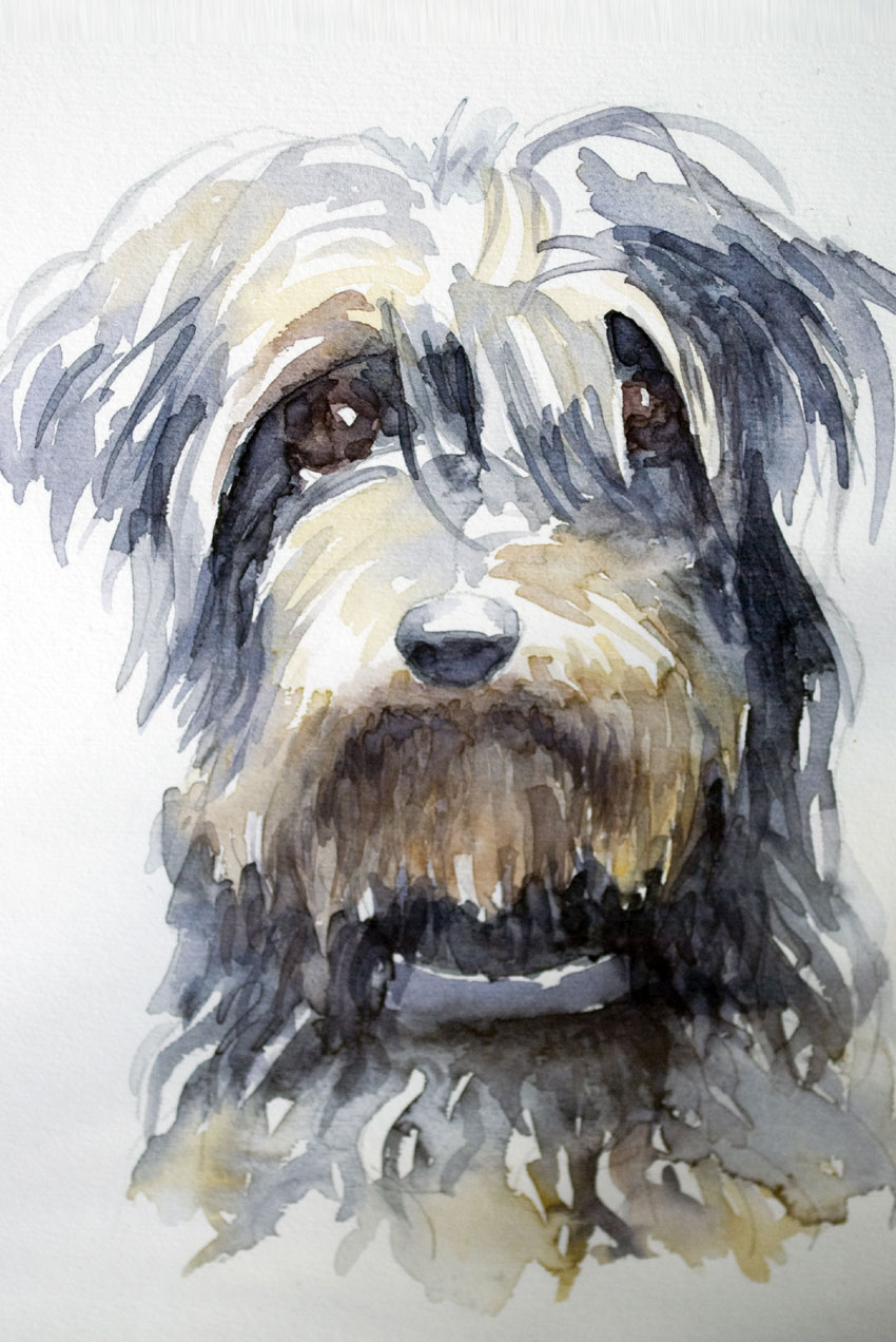 Retrato de mascota en acuarela